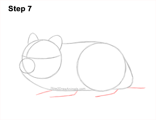How to Draw a Russian Winter White Dwarf Hamster 7