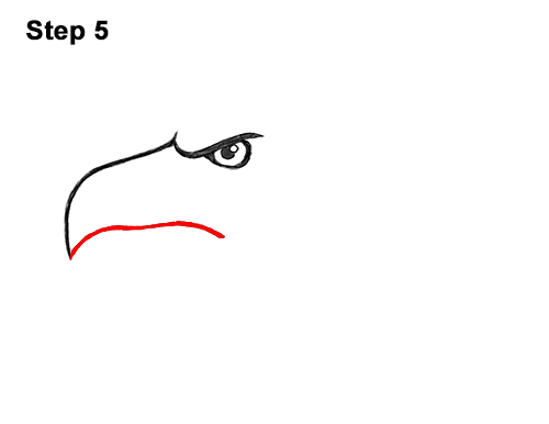 How to Draw Cool Cartoon Bald Eagle Head 5