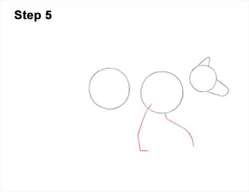 How to Draw a Red Fox Walking Side View 5
