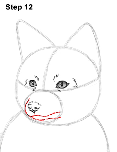 How to Draw a Red Fox Sitting 12