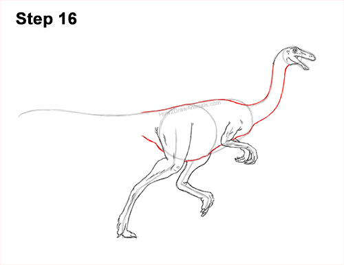 How to Draw a Gallimimus Dinosaur Running Side 1