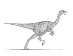 How to Draw a Jurassic Park Gallimimus Dinosaur Running