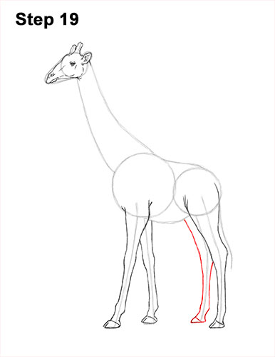 How to Draw a Reticulated Giraffe Side 19