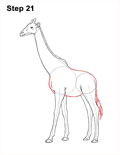 How to Draw a Reticulated Giraffe Side 21