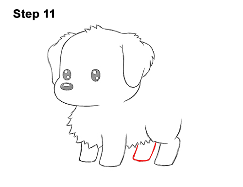 How to Draw a Cute Cartoon Golden Retriever Puppy Dog Chibi Kawaii 11