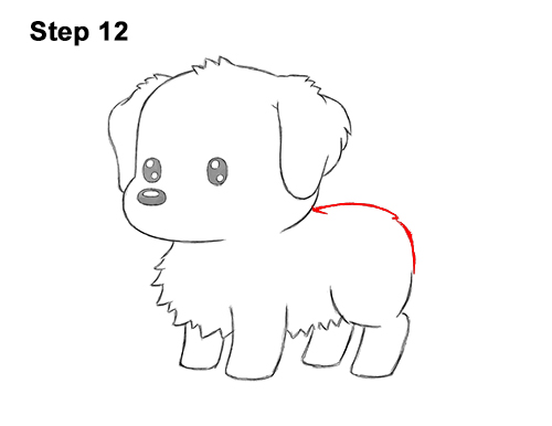How to Draw a Cute Cartoon Golden Retriever Puppy Dog Chibi Kawaii 12