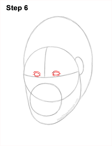 How to Draw a Gorilla Head Face Portrait 6