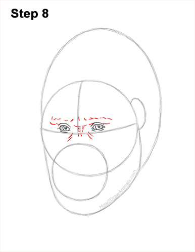 How to Draw a Gorilla Head Face Portrait 8