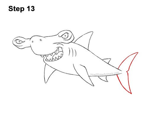 How to Draw a Cool Cartoon Hammerhead Shark 13