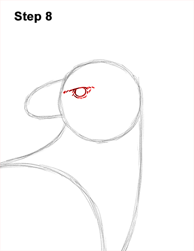 How to Draw an American Harpy Eagle Bird 8