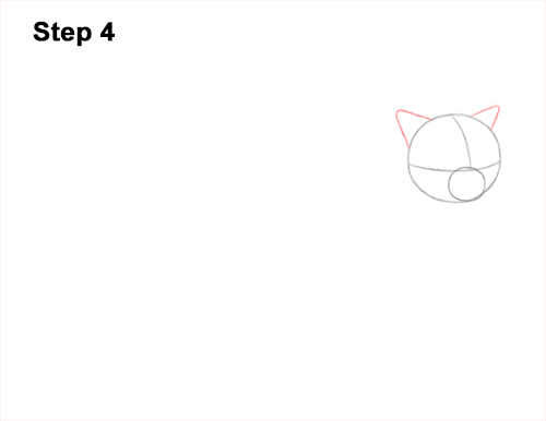 How to Draw Himalayan Cat Kitten Seal Point 4