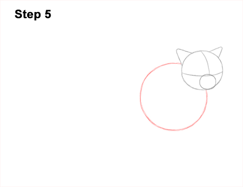 How to Draw Himalayan Cat Kitten Seal Point 5
