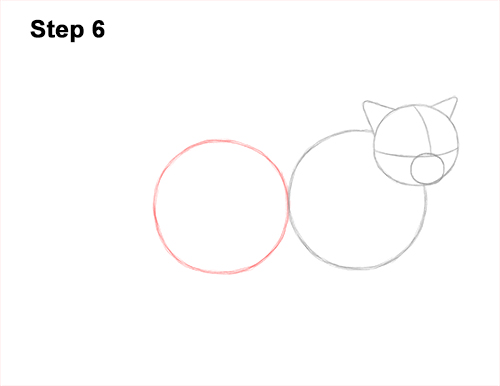 How to Draw Himalayan Cat Kitten Seal Point 6