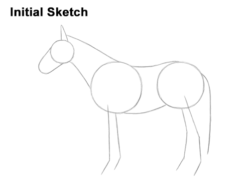 How to Draw a Brown Horse Color Side View Guides Lines