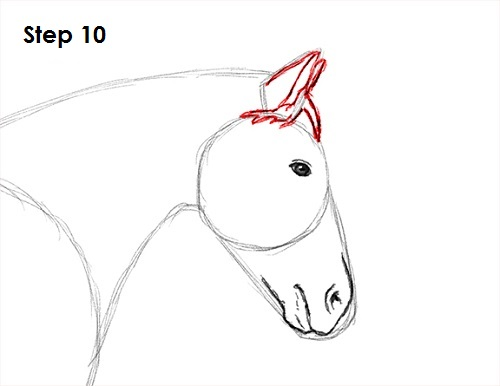Draw a Horse Jumping 10