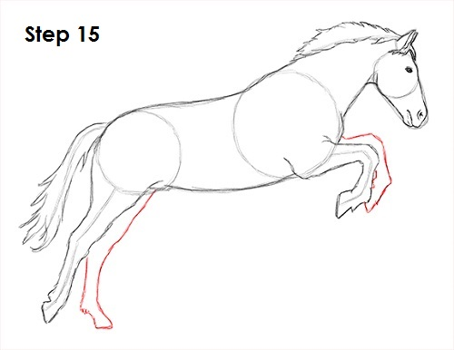 Draw a Horse Jumping 15