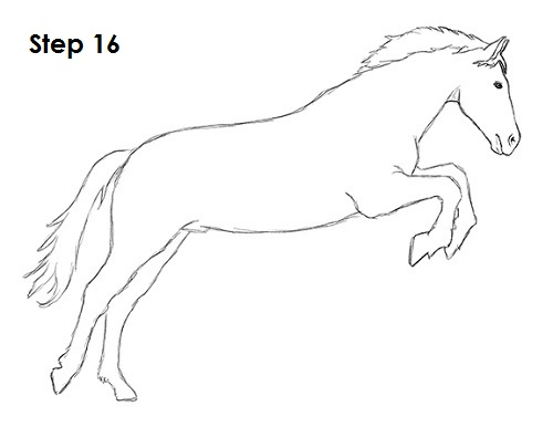 Draw a Horse Jumping 16