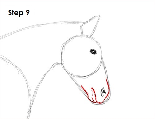 Draw a Horse Jumping 9