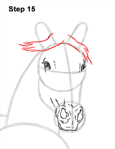 How to Draw Horse Running Front Forward 15