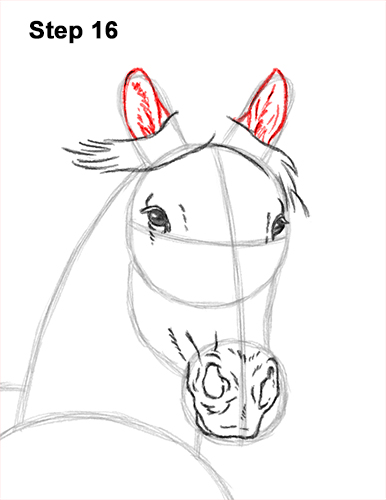 How to Draw Horse Running Front Forward 16
