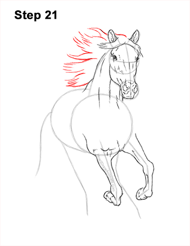 How to Draw Horse Running Front Forward 21