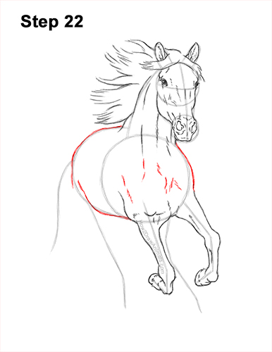 How to Draw Horse Running Front Forward 22