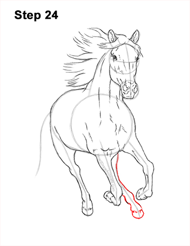 How to Draw Horse Running Front Forward 24