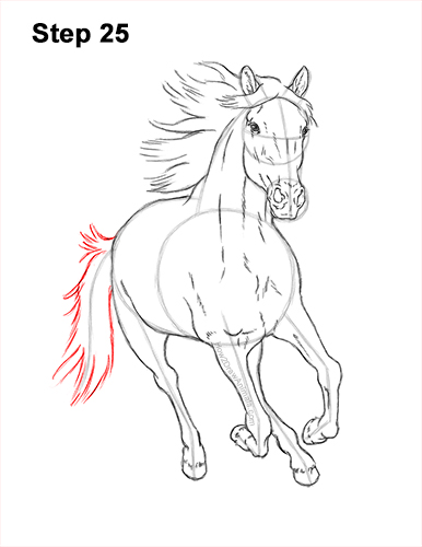 How to Draw Horse Running Front Forward 25
