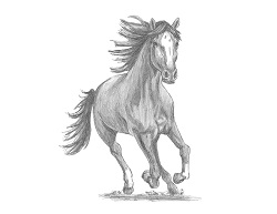 How to Draw a  Horse Running (Front View)