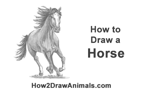 How to Draw Horse Running Front Forward