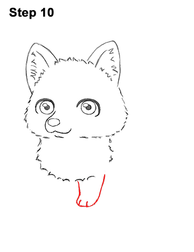 How to Draw a Cute Chibi Little Mini Cartoon Husky Puppy Dog 10