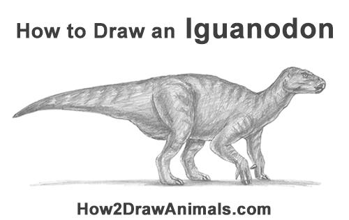 How to Draw an Iguanodon Dinosaur Side