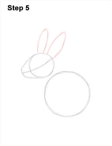 How to Draw a Jackalope Rabbit Antlers 5