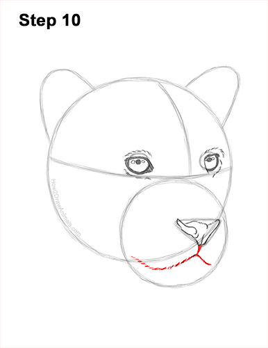 How to Draw a Jaguar Head Portrait Face 10