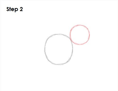 Draw Kangaroo 2