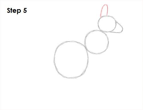 Draw Kangaroo 5
