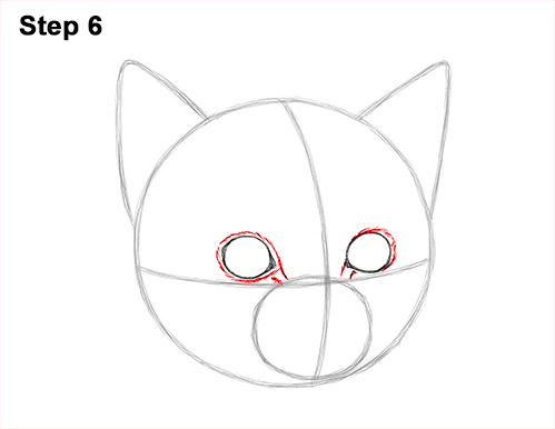 How to Draw Cute Cat Kitten Head Face Portrait 6