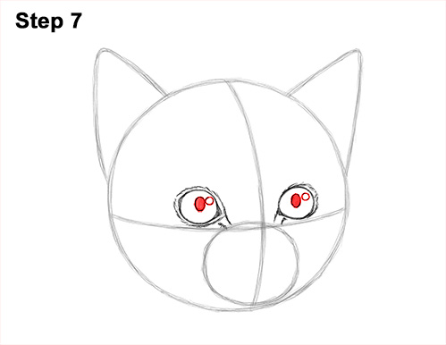How to Draw Cute Cat Kitten Head Face Portrait 7
