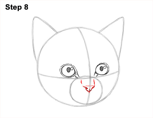 How to Draw Cute Cat Kitten Head Face Portrait 8