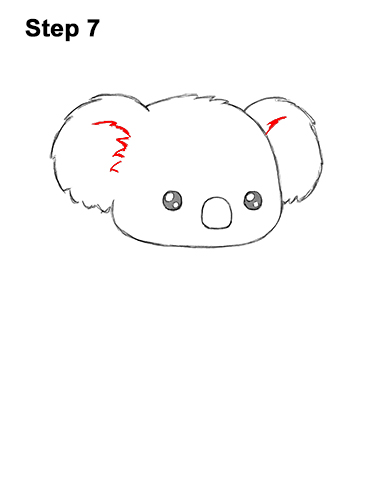 How to Draw Cute Cartoon Koala Bear 7