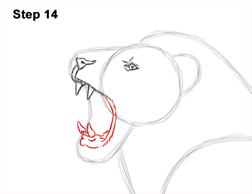 How to Draw a Lion Roar Roaring Side Color 14