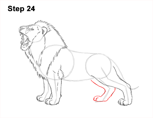 How to Draw a Lion Roar Roaring Side Color 24