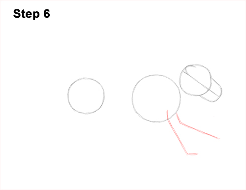 How to Draw Male Lion Running Side 6
