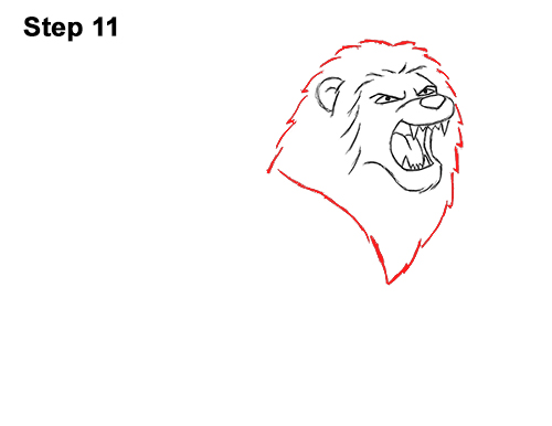 How to Draw Tough Cool Angry Cartoon Lion Roaring 11