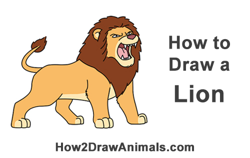 How to Draw Tough Cool Angry Cartoon Lion Roaring