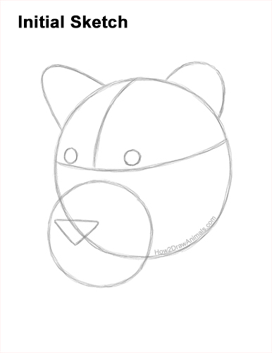 How to Draw a Lioness Head Face Portrait Guides Lines