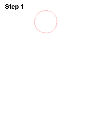 How to Draw a Rhesus Macaque Monkey Sitting 1