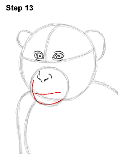 How to Draw a Rhesus Macaque Monkey Sitting 13