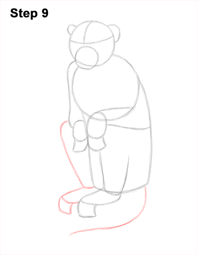 How to Draw a Rhesus Macaque Monkey Sitting 9
