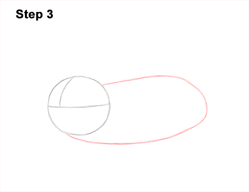 How to Draw a Common European Mole Side 3